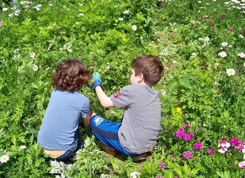 insectele-de-sezon-si-copii