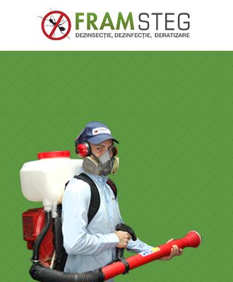 servicii-profesionale-dezinsectie-dezinfectie-deratizare-bucuresti